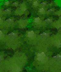 秘天崖前森林(虹龙洞二面场景)