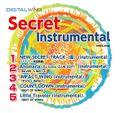 Secret Instrumental