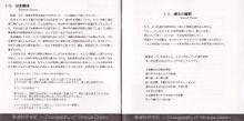 12-13页
