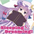 Sleeping Dreaming!封面.jpg