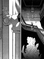 红魔馆内廊(三月精S7话11)
