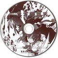 东方绯想天体验版disc.jpg