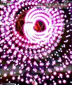 吉兆「极乐的紫色云路」(星莲船).jpg