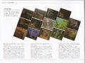 ZUN(DOUJIN GAME × PACKAGE DESIGN采访5).jpg