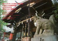 东方神灵庙采访9