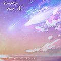 Tou-Hop Vol 10
