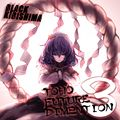 TOHO FUTURE DIMENTION VOL.3