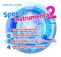 Special Instrumental 2