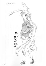 铃仙·优昙华院·因幡2
