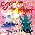 YEK Inst project vol.Ⅱ封面.jpg