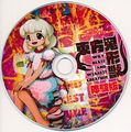 东方鬼形兽体验版disc.jpg