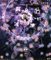 GoM插图(八云紫-1-2).jpg