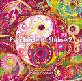 Psychedelic Shrine 2